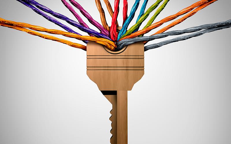 Diversity: Shutterstock