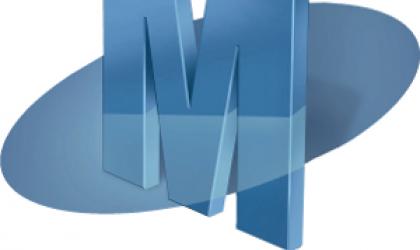Merit Software